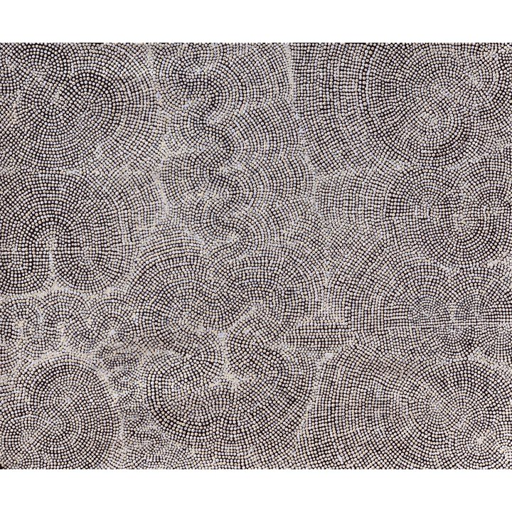 Dennis Hatches, Untitled: Ngura - Country, aboriginal painting